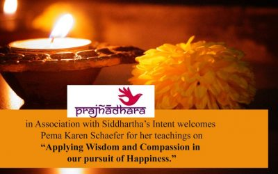 Teachings by Pema Karen Schaefer